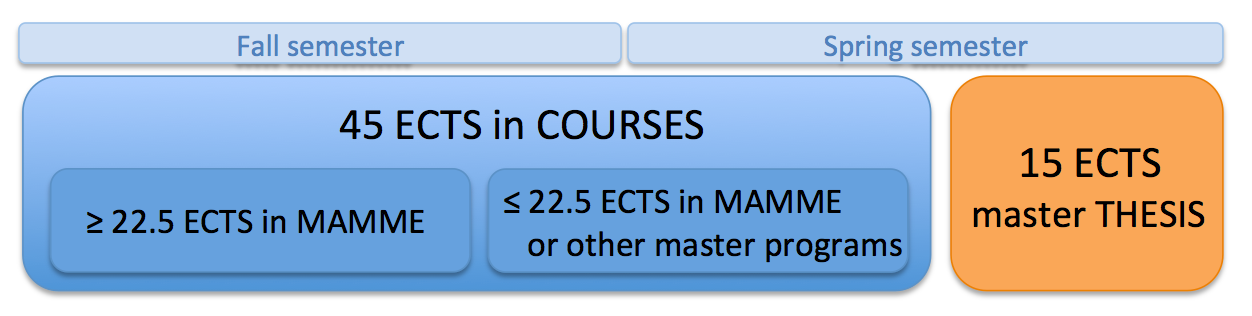 MAMME_studyProgram.png